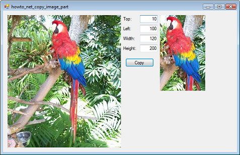 Vb Helper Howto Copy Part Of An Image Into A New Picturebox In